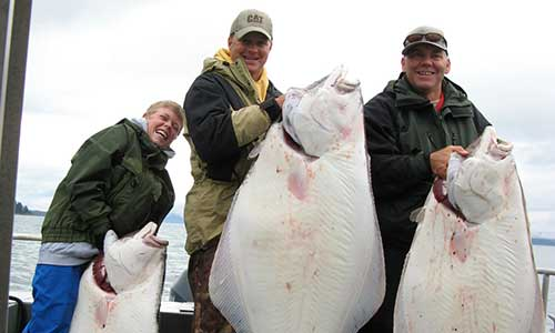 Halibut Catch